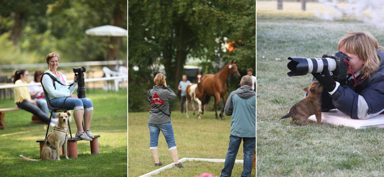 Introbild Collage von Petra Nettky von Tierfotografie Huber Unterstützerin von Hörer helfen Kindern