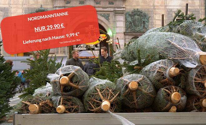 Tannenbaumverkauf bei Sierichs Winterzauber
